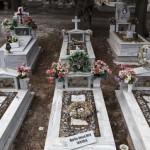 Migrant Cemetery Lesbos